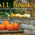 fall back November 1 2015